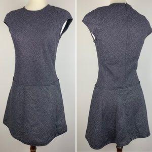 Classic THEORY Work Dress Sparkly Drop-Waist Mini